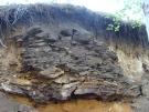 Железистый песчаник под Половинным